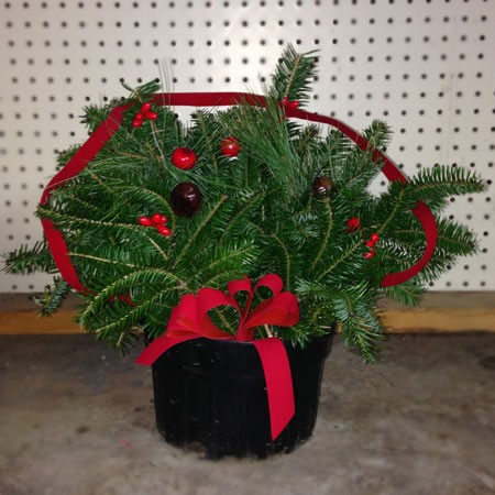 Red Holly Berry Arrangement